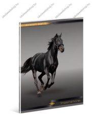 Lovas, fekete prémium szótár füzet, A5 - Ars Una