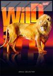 Wild Life - Oroszlán spirálfüzet, A4, kockás, 96 lap