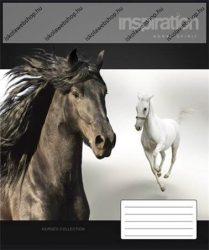 Lovak/Lovas fekete és fehér ló 3. osztályos vonalas füzet, A5/12-32