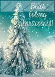 Karácsonyi képeslap, Fenyőfa