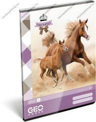 Horse/Lovas A4 kockás füzet
