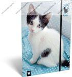 Cicás/Cat blue A/4 gumis dosszié