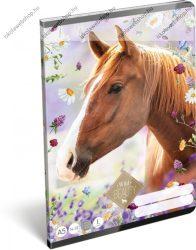 Lovas/Wild Beauty Brown 1. osztályos vonalas füzet, A5/14-32