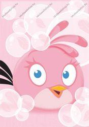 Angry Birds Bubbles 1. osztályos vonalas füzet (A5/14-32)