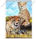 Animals pet - Leopárd kockás füzet, A/4