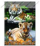 Animals pet - Tigris kockás füzet, A/4