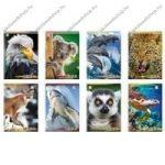 Animals - Puma kockás füzet, A/4