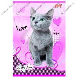My Little Friend Szürke cica/Cicás A4 kockás füzet, margóval  1 db - Unipap