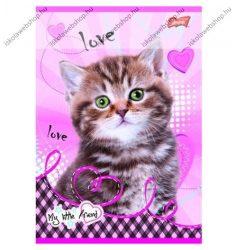 My Little Friend Kékszemű szürke cica/Cicás A4 kockás füzet, margóval  1 db - Unipap