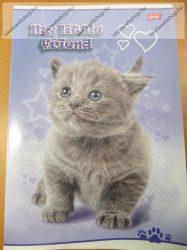 My Little Friend Szürke-fehér cica/Cicás A4 kockás füzet, margóval  1 db - Unipap