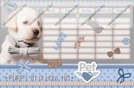 Pets kétoldalas órarend